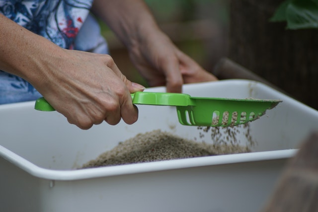 a person cleaning a litter box