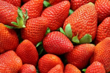 A picture of strawberries to highlight the question, can cats eat strawberries?